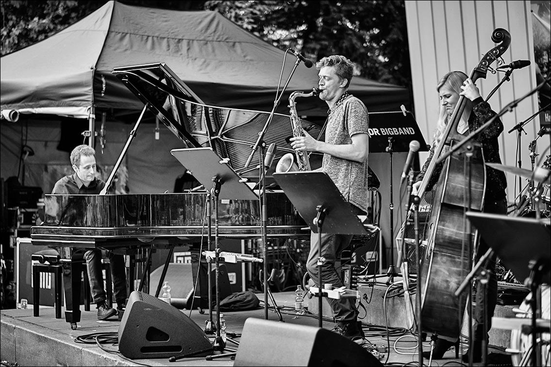 DSF6863 in Lisa Wulff Quartett