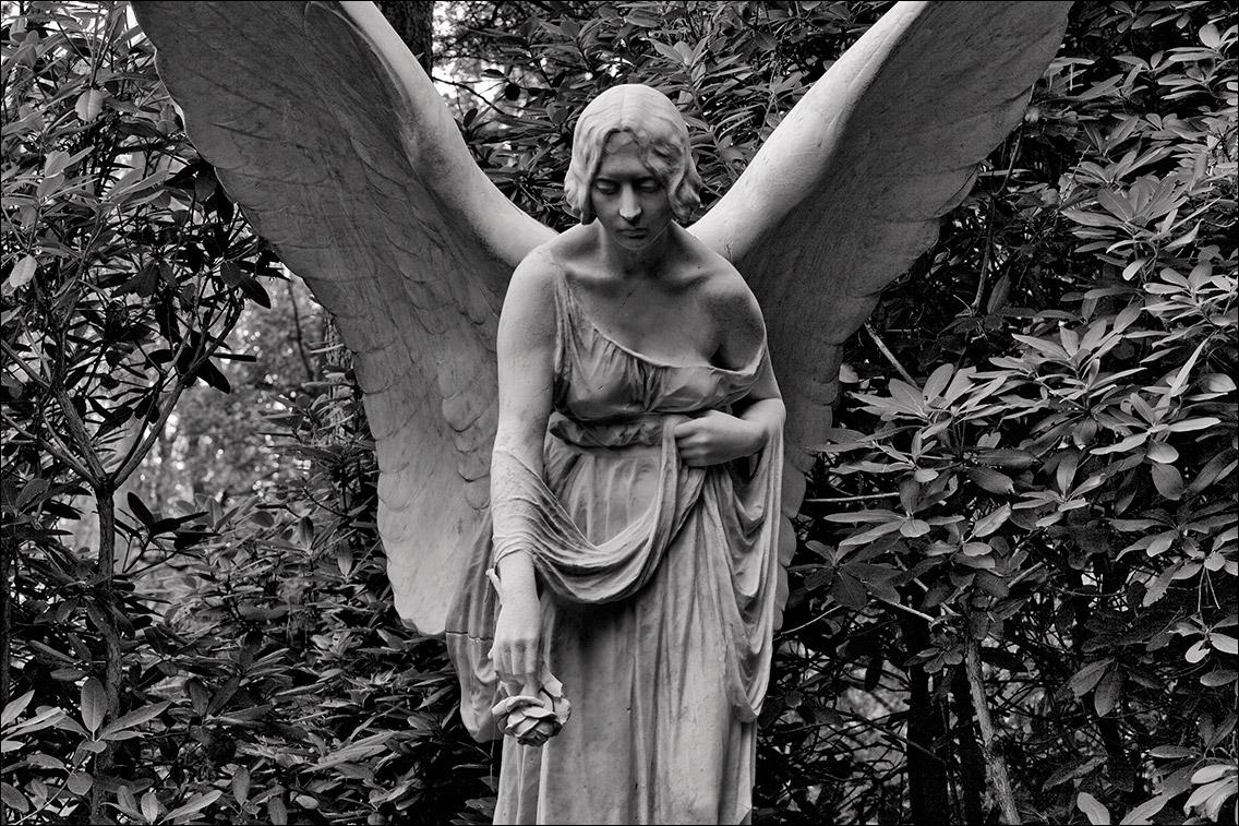 IMG 6713 Plesch Ritz 1903 in Bildhauer Arthur Bock auf dem Ohlsdorfer Friedhof